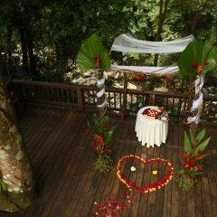 Отель The Lodge at Pico Bonito фото 2