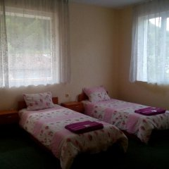 Отель Family Hotel Drumex Болгария, Чепеларе - отзывы, цены и фото номеров - забронировать отель Family Hotel Drumex онлайн фото 5