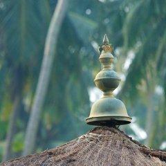 Отель Reef Villa and Spa Шри-Ланка, Ваддува - отзывы, цены и фото номеров - забронировать отель Reef Villa and Spa онлайн бассейн фото 2
