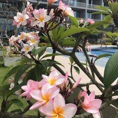 Отель Club Waskaduwa Beach Resort & Spa фото 8