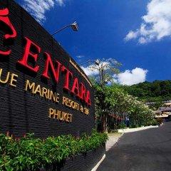 Отель Centara Blue Marine Resort & Spa Phuket Таиланд, Пхукет - отзывы, цены и фото номеров - забронировать отель Centara Blue Marine Resort & Spa Phuket онлайн