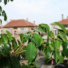 Отель Zoya Guest House Болгария, Равда - отзывы, цены и фото номеров - забронировать отель Zoya Guest House онлайн фото 3