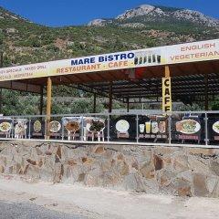 Priene Pansiyon Турция, Капикири - отзывы, цены и фото номеров - забронировать отель Priene Pansiyon онлайн гостиничный бар