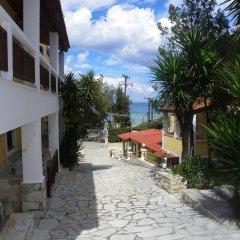 Отель Mirabelle Hotel Греция, Аргасио - отзывы, цены и фото номеров - забронировать отель Mirabelle Hotel онлайн фото 5