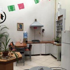 Hostel Lit Guadalajara с домашними животными