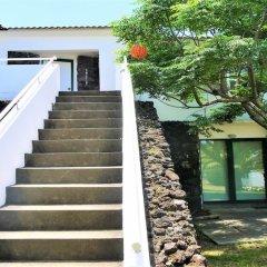 Отель Casa do Pico Португалия, Мадалена - отзывы, цены и фото номеров - забронировать отель Casa do Pico онлайн фото 7