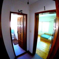 Отель Funky Monkey Hostel Болгария, Пловдив - отзывы, цены и фото номеров - забронировать отель Funky Monkey Hostel онлайн комната для гостей фото 2
