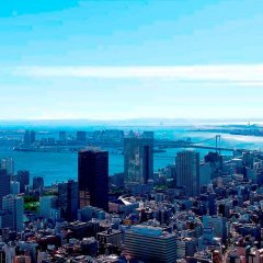 Отель Andaz Tokyo Toranomon Hills - a concept by Hyatt Япония, Токио - 1 отзыв об отеле, цены и фото номеров - забронировать отель Andaz Tokyo Toranomon Hills - a concept by Hyatt онлайн пляж фото 2