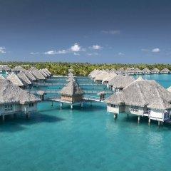 Отель The St Regis Bora Bora Resort Французская Полинезия, Бора-Бора - отзывы, цены и фото номеров - забронировать отель The St Regis Bora Bora Resort онлайн фото 9
