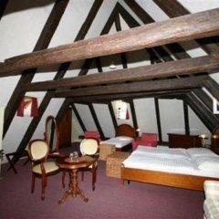 Отель U Tri Bubnu Прага удобства в номере