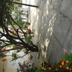 Отель Gia Bao Phat Homestay фото 10