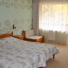 Отель Family Hotel Shoky Болгария, Чепеларе - отзывы, цены и фото номеров - забронировать отель Family Hotel Shoky онлайн комната для гостей фото 5