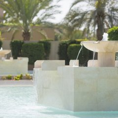 Отель Desert Palm ОАЭ, Дубай - отзывы, цены и фото номеров - забронировать отель Desert Palm онлайн с домашними животными
