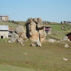 Birlik Yaylakent Турция, Узунгёль - отзывы, цены и фото номеров - забронировать отель Birlik Yaylakent онлайн приотельная территория