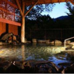 Отель Kinugawa Gyoen Япония, Никко - отзывы, цены и фото номеров - забронировать отель Kinugawa Gyoen онлайн бассейн фото 3