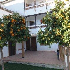 Отель Un Rincon Para Descansar Испания, Квентар - отзывы, цены и фото номеров - забронировать отель Un Rincon Para Descansar онлайн фото 4
