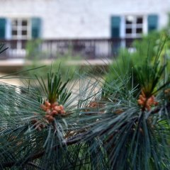 Отель Im Garten 9 Гаргаццоне спортивное сооружение