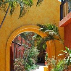 Отель Mar de Cortez Мексика, Кабо-Сан-Лукас - отзывы, цены и фото номеров - забронировать отель Mar de Cortez онлайн фото 10