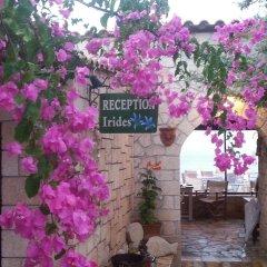 Отель Irides Luxury Studios & Apartments Греция, Эгина - отзывы, цены и фото номеров - забронировать отель Irides Luxury Studios & Apartments онлайн фото 7