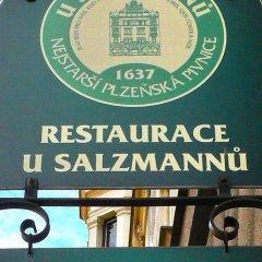 Отель Penzion U Salzmannu Пльзень развлечения