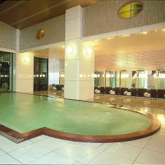 Отель Tsuetate Keiryu no Yado Daishizen Япония, Минамиогуни - отзывы, цены и фото номеров - забронировать отель Tsuetate Keiryu no Yado Daishizen онлайн бассейн фото 3
