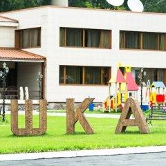 Гостиница Шишка детские мероприятия
