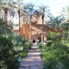 Отель Riad Tagmadart Ferme D'hôte Марокко, Загора - отзывы, цены и фото номеров - забронировать отель Riad Tagmadart Ferme D'hôte онлайн приотельная территория фото 2