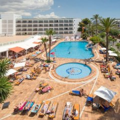Hotel Playasol Mare Nostrum с домашними животными