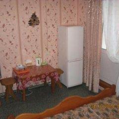 Гостиница Zhemchuzhina в Артыбаше отзывы, цены и фото номеров - забронировать гостиницу Zhemchuzhina онлайн Артыбаш удобства в номере