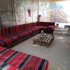 Отель Tell Madaba Иордания, Мадаба - отзывы, цены и фото номеров - забронировать отель Tell Madaba онлайн детские мероприятия фото 2