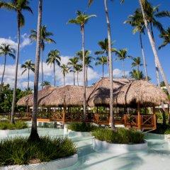 Отель Impressive Premium Resort & Spa Punta Cana – All Inclusive Доминикана, Пунта Кана - отзывы, цены и фото номеров - забронировать отель Impressive Premium Resort & Spa Punta Cana – All Inclusive онлайн