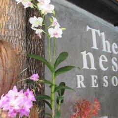 Отель The Nest Resort интерьер отеля фото 3