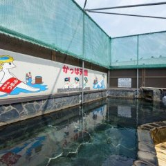 Отель Tsurumi Япония, Беппу - отзывы, цены и фото номеров - забронировать отель Tsurumi онлайн фото 9