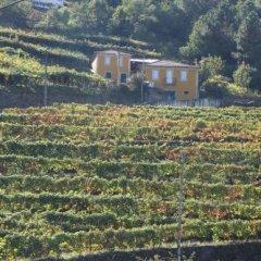 Отель Casa da Fonte Португалия, Ламего - отзывы, цены и фото номеров - забронировать отель Casa da Fonte онлайн фото 6