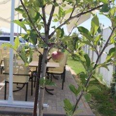 Мини-отель Хата Химки фото 9