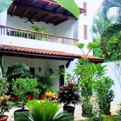 Отель Casa Luz de Luna Мексика, Сиуатанехо - отзывы, цены и фото номеров - забронировать отель Casa Luz de Luna онлайн фото 5