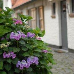 Отель Flemish cottage Бельгия, Осткамп - отзывы, цены и фото номеров - забронировать отель Flemish cottage онлайн