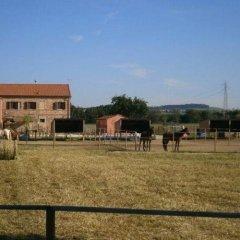 Отель Conero Ranch Италия, Порто Реканати - отзывы, цены и фото номеров - забронировать отель Conero Ranch онлайн фото 4
