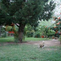 Kibala Hotel фото 12