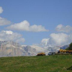Отель Albergo Rizzi Долина Валь-ди-Фасса приотельная территория фото 2