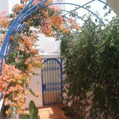 Отель Riad Marlinea с домашними животными