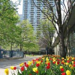 Отель Chestnut Residence and Conference Centre - University of Toronto фото 7