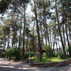 Отель Arsan Otel парковка