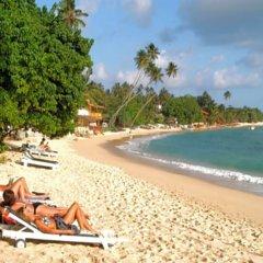 Отель Hibiscus Villa пляж фото 2