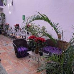 Отель Olga Querida B&B Hostal Мексика, Гвадалахара - отзывы, цены и фото номеров - забронировать отель Olga Querida B&B Hostal онлайн фото 10