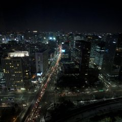 Отель Brown Suites Seoul Южная Корея, Сеул - 1 отзыв об отеле, цены и фото номеров - забронировать отель Brown Suites Seoul онлайн фото 4
