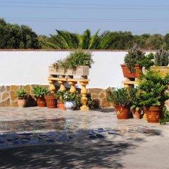 Отель Apartamentos El Palmeral Испания, Кониль-де-ла-Фронтера - отзывы, цены и фото номеров - забронировать отель Apartamentos El Palmeral онлайн фото 3