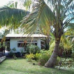 Отель B&B Nature Song Island фото 6