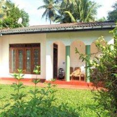 Отель Hikka Train Hostel Шри-Ланка, Хиккадува - отзывы, цены и фото номеров - забронировать отель Hikka Train Hostel онлайн комната для гостей фото 3