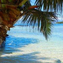 Отель Enjoy Villa Lagoon 4 Французская Полинезия, Папеэте - отзывы, цены и фото номеров - забронировать отель Enjoy Villa Lagoon 4 онлайн пляж